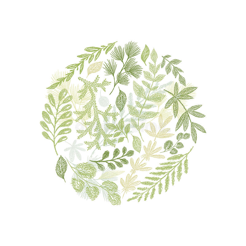 Circle green floral hand drawn composition vector vector illustration