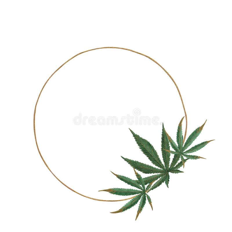 Circle of green hemp leaves in the ring     circle from the green leaves of hemp in the Golden ring. Hand-drawn circle of watercolor green hemp leaves with gold royalty free illustration