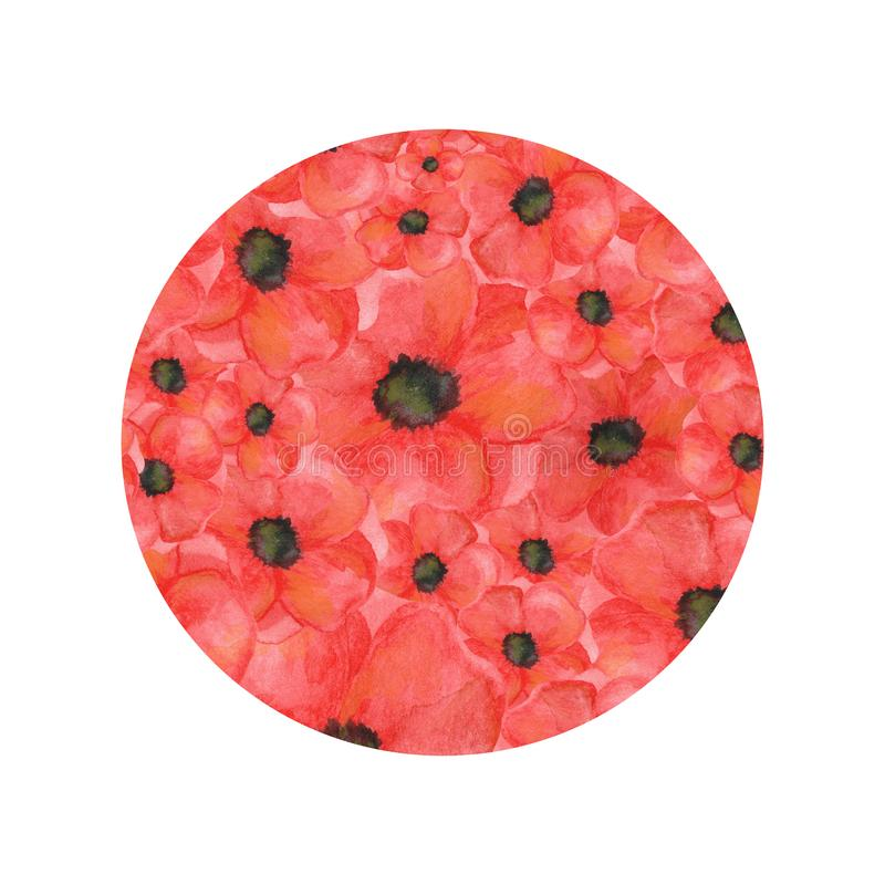 Circle shape of poppies on  white background. hand drawn watercolor botanical stock illustration