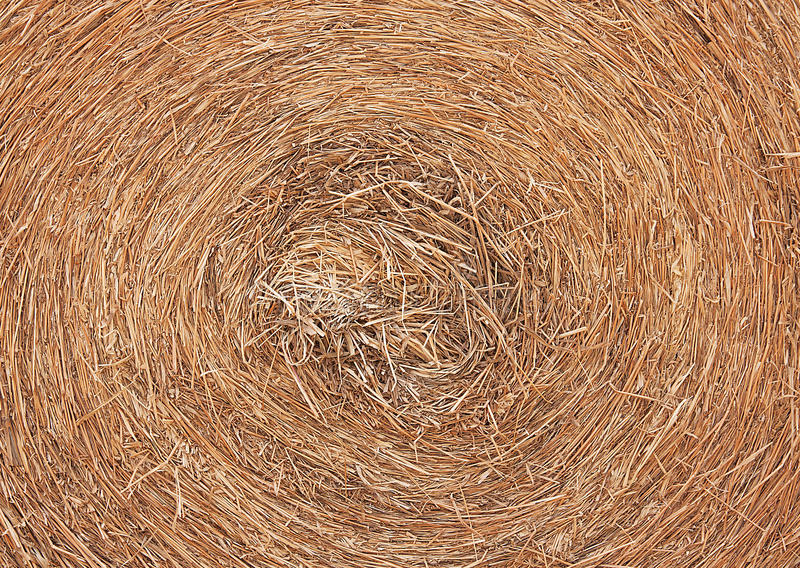 Circle thatch. Texture and wallpaper stock images