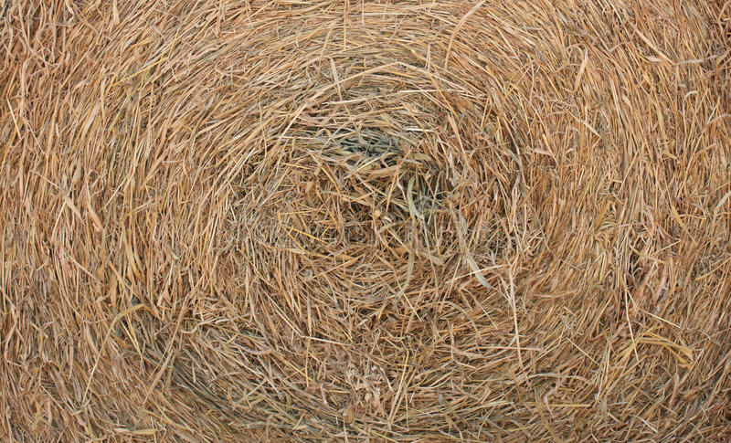 Circle thatch texture and wallpaper. Circle thatch for texture and wallpaper stock images