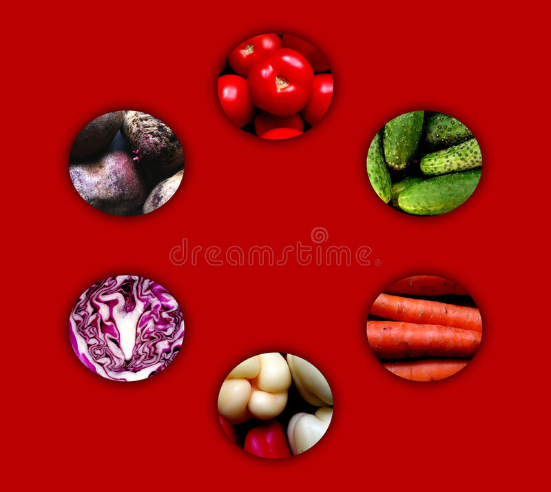 Circles full of vegetables. Collection of six circles with shadow and full of various vegetables: tomatoes, cucumbers, carrots, sweet peppers, red cabbage and royalty free illustration