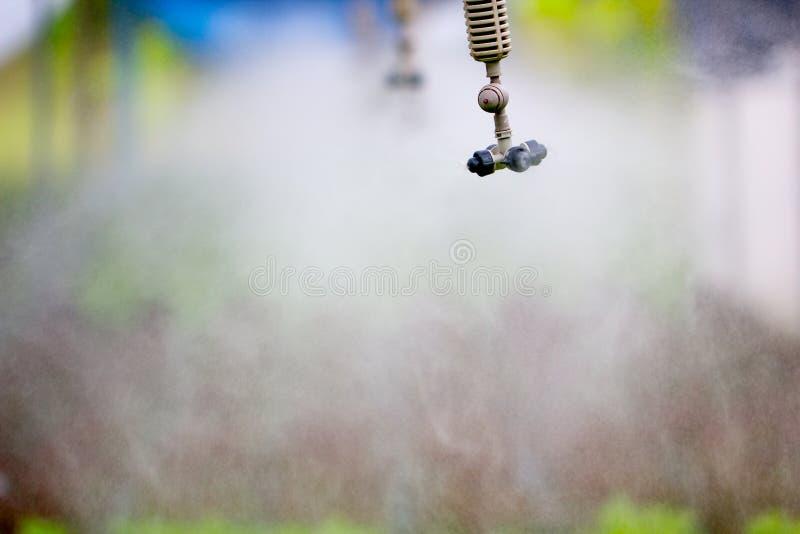 Circuito de agua del saltador que trabaja en granja vegetal hidropónica fotografía de archivo