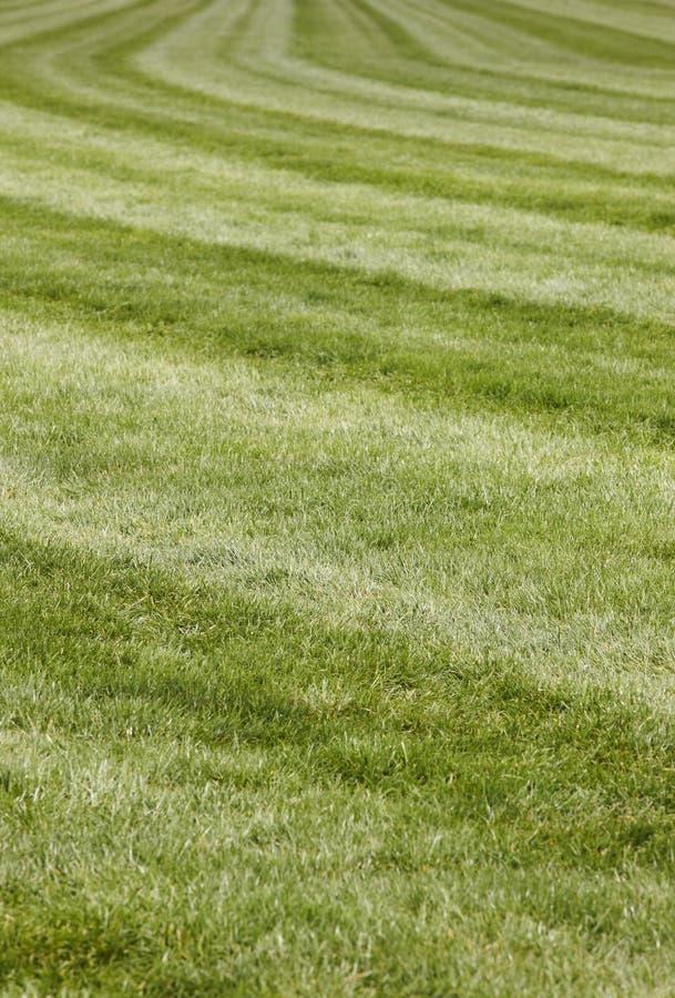 Circuito de carreras del caballo con la línea de la curva foto de archivo libre de regalías