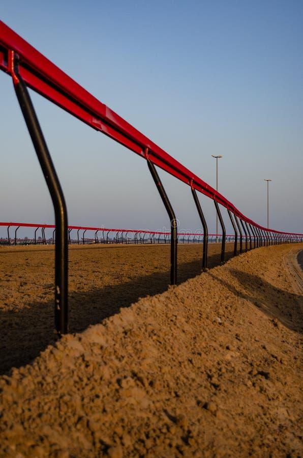Circuito de carreras del camello fotos de archivo