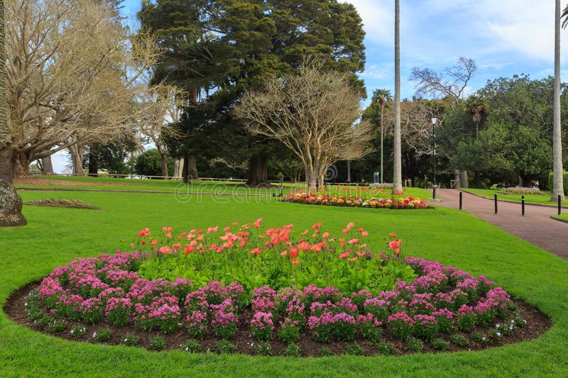 Circular flowerbeds in a park, Auckland, New Zealand royalty free stock image