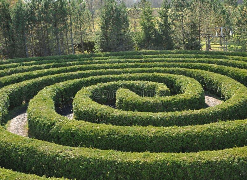 Circular Maze Royalty Free Stock Photos