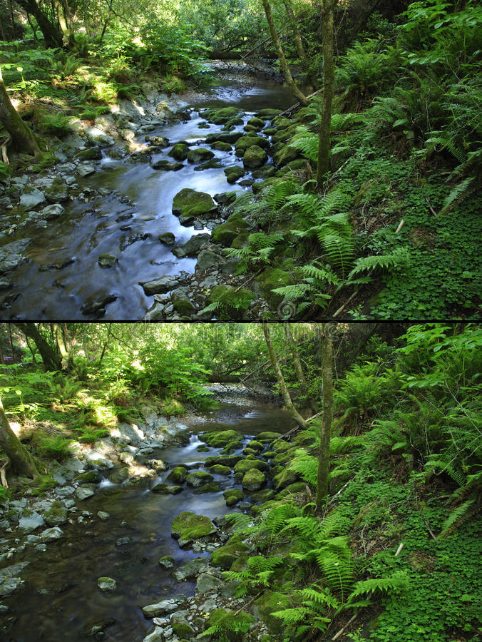 Circular polarizer filter effect. Comparison shots of nature image without polarizer (above) and image with circular polarizer filter (below stock images