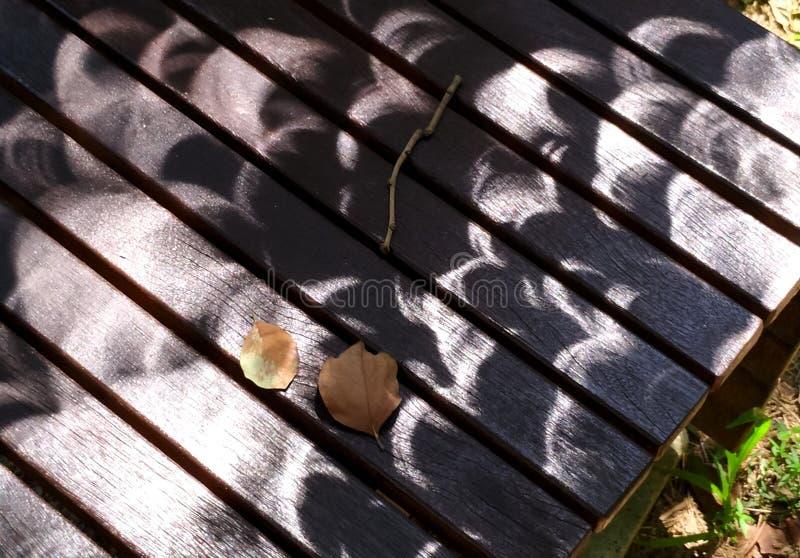 Circular shadows during annular solra eclipse royalty free stock photo