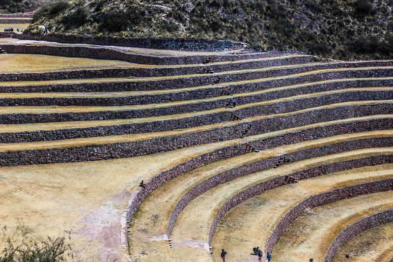 Circular terraces of Moray. Possibly an Inca agricultural laboratory, in summer with dry and yellow vegetation royalty free stock photography