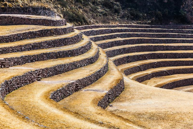 Circular terraces of Moray. Possibly an Inca agricultural laboratory, in summer with dry and yellow vegetation royalty free stock photo