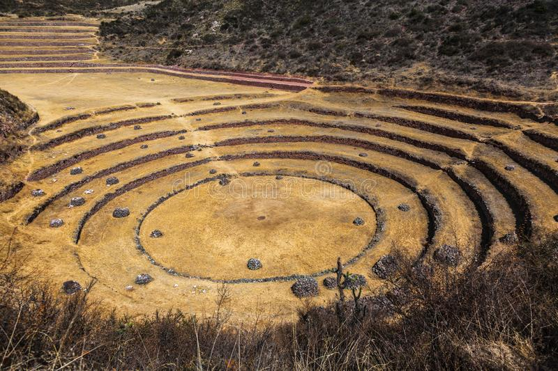 Circular terraces of Moray. Possibly an Inca agricultural laboratory, in summer with dry and yellow vegetation royalty free stock image