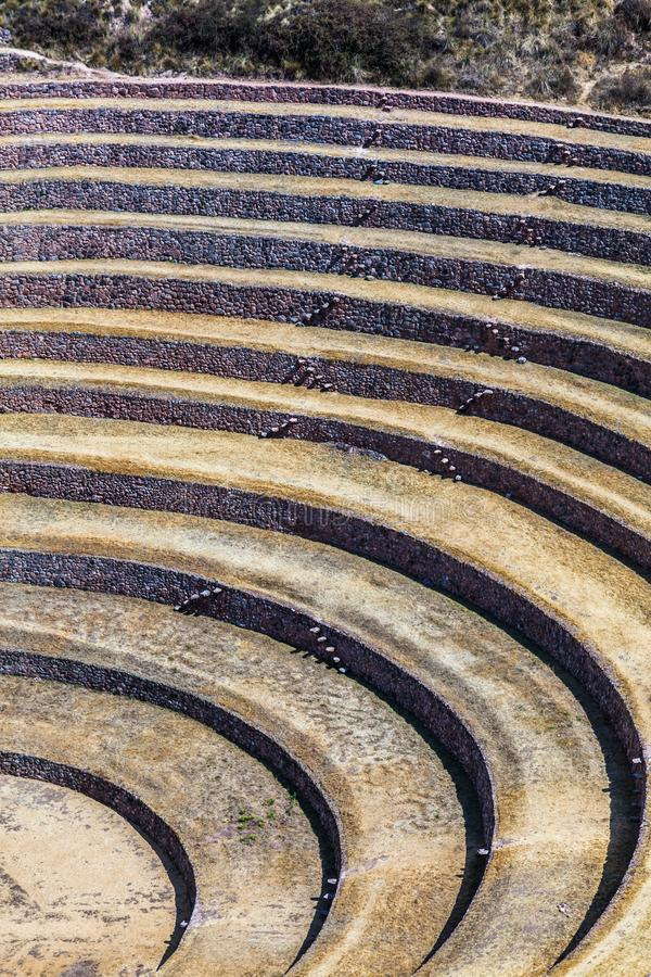 Circular terraces of Moray. Possibly an Inca agricultural laboratory, in summer with dry and yellow vegetation royalty free stock images