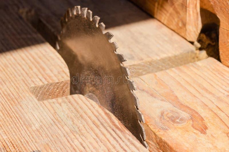 A circular viu a lâmina cortando o close up de madeira no foco seletivo fotos de stock royalty free