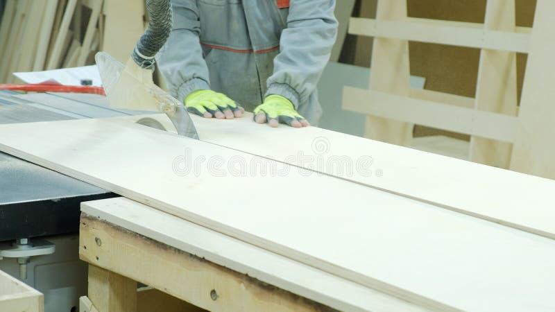 A circular viu na ação, carpinteiro que corta folhas da madeira compensada Fabricação de mobília de madeira fotografia de stock royalty free