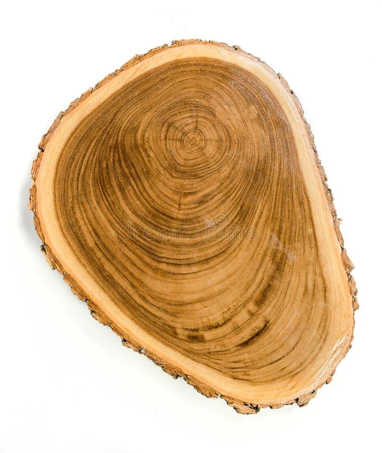 Free Circular Wood Slab With Bark Royalty Free Stock Photo - 165666705