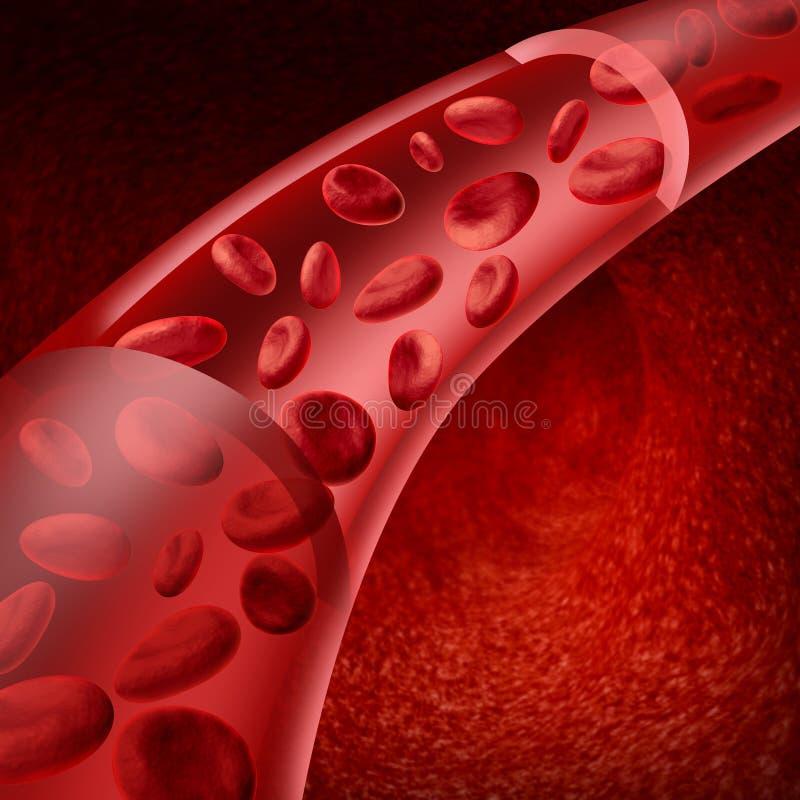 Circuler de globules sanguins illustration libre de droits