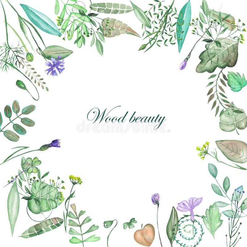 Circunde el marco de elementos, de hojas, de ramas y de wildflowers florales stock de ilustración