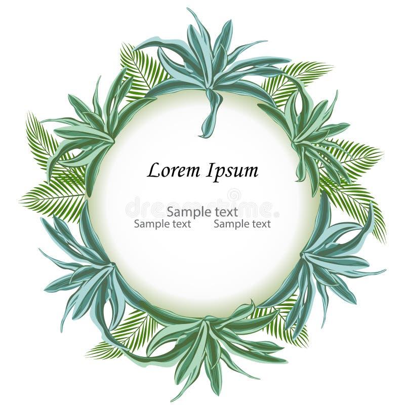 Circunde la muestra con el espacio del texto de la rama de la palma de las hojas y de d tropicales fotos de archivo