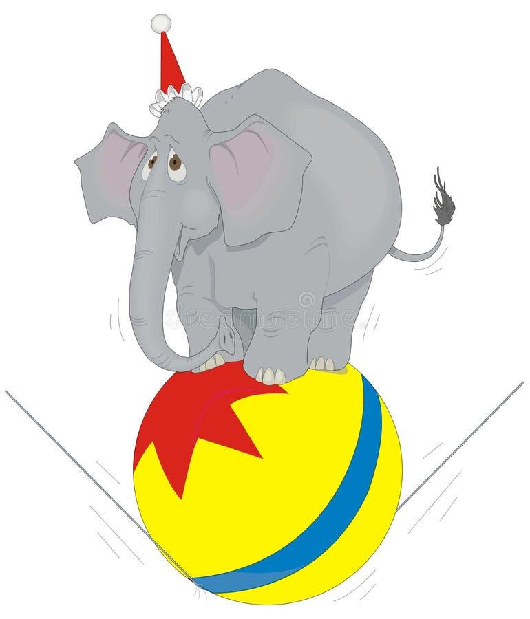 Circus Elephant Royalty Free Stock Photos