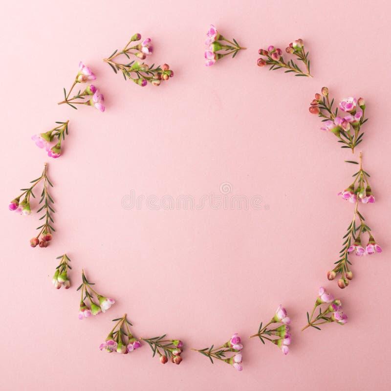 Cirkel die van bloemen wordt gemaakt royalty-vrije stock afbeelding