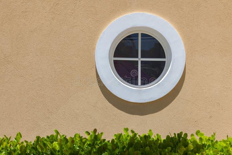 Cirkel wit venster op de textuurmuur Kleine schaduw en groene bladeren royalty-vrije stock fotografie
