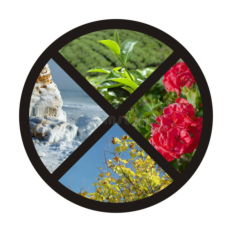cirkelcollage fyra natursäsonger royaltyfria foton