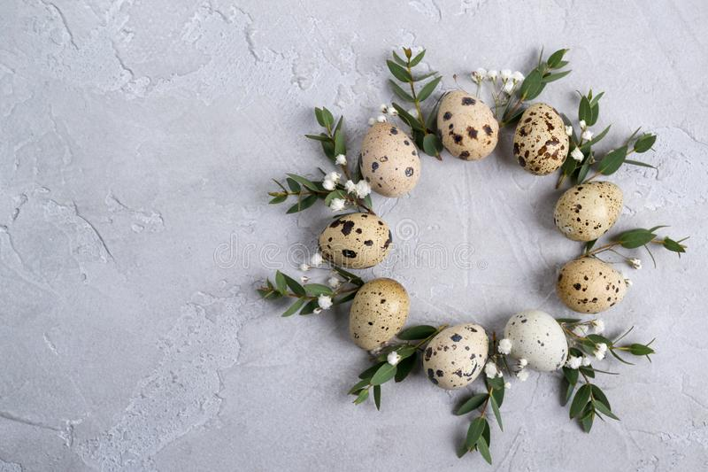 Cirkelgrens voor de kaart of de uitnodiging van Pasen Pasen-kroon met Pasen-kwartels en bladtwijgen van eucalyptus Op grijze conc royalty-vrije stock foto's