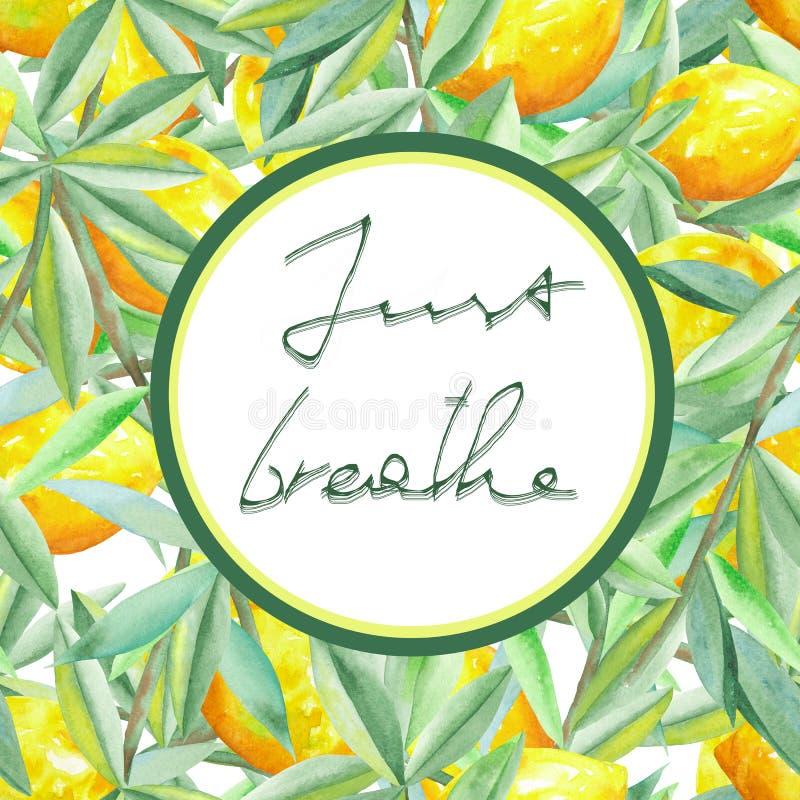 Cirkelramen på en citrus modellbakgrund med citroner på filialerna med gräsplansidor målade i vattenfärg på en vit backgro royaltyfri illustrationer