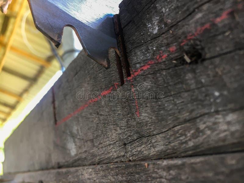Cirkelsåg på att markera på trä Snickare Using Circular Saw f?r tr? arkivfoto