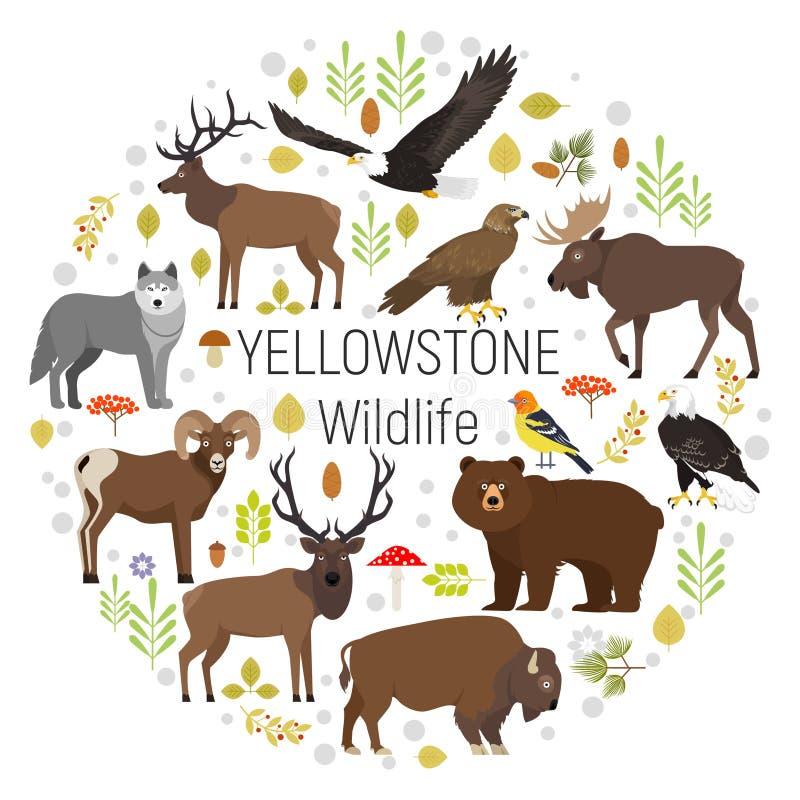 Cirkelvektoruppsättning av växter och Yellowstone djur stock illustrationer