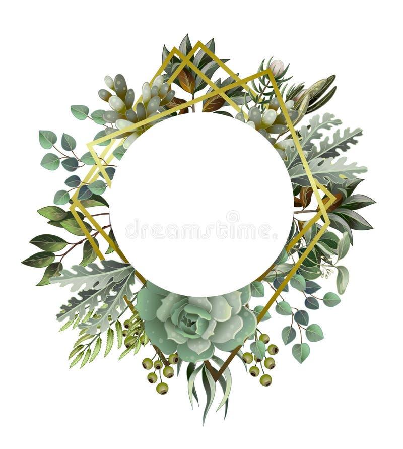 Cirkla ramen med suckulenta och guld- beståndsdelar för sidor, i vattenfärgstil Eukalyptus, magnolia, ormbunke och annan stock illustrationer