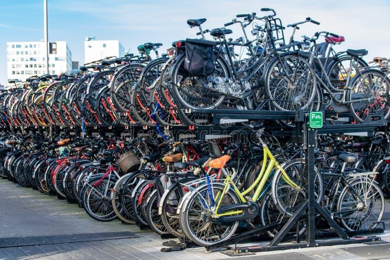Cirkuleringen parkerar i Amsterdam, Nederländerna arkivfoto