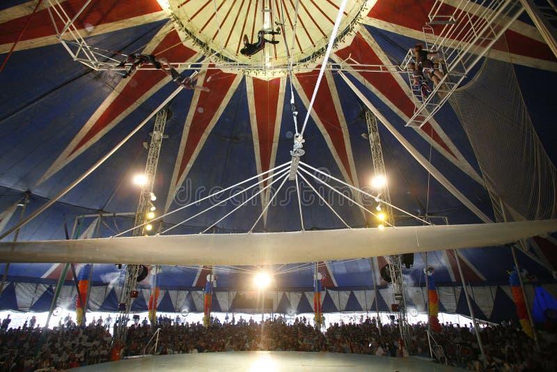 Cirkus royaltyfri bild