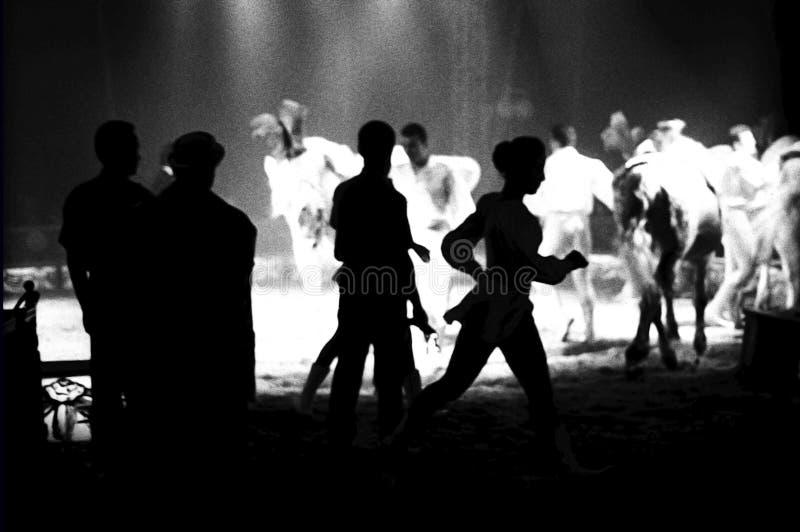Cirkus Medrano - Cirque Medrano fotografering för bildbyråer