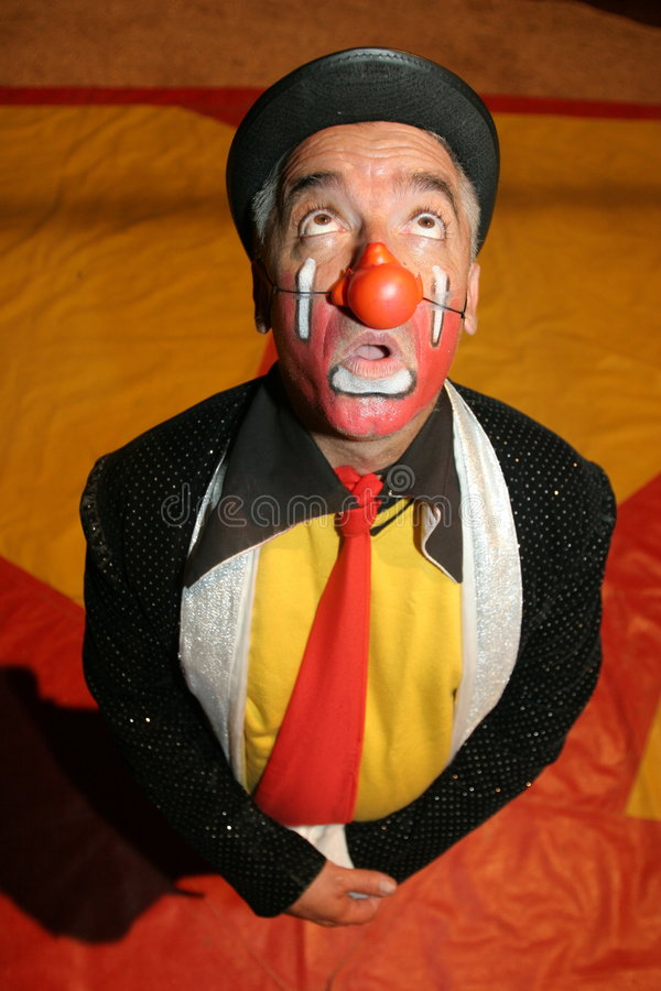cirkusclown royaltyfri bild
