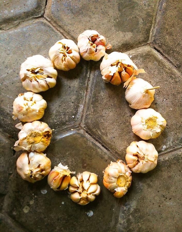 Cirled garlics zdjęcie stock