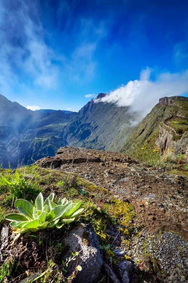 Download Cirque de Mafate caldera stock image. Image of caldera - 24057291