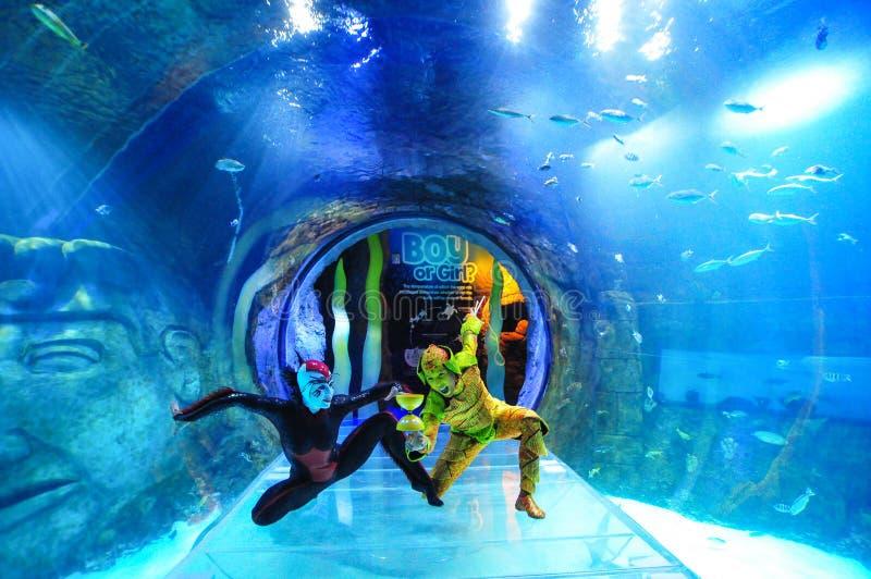 Cirque du Soleil imagen de archivo