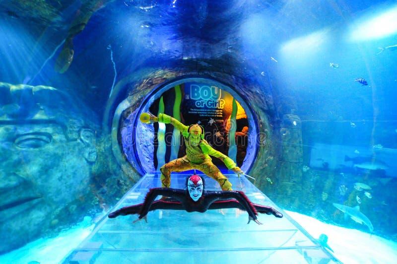 Cirque du Soleil royalty-vrije stock afbeeldingen
