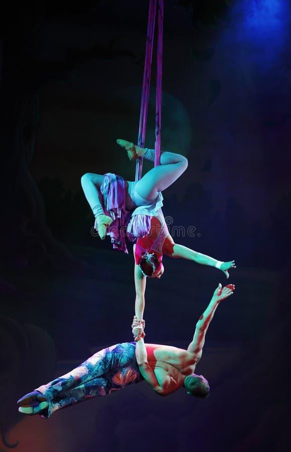 Cirque sueña (fantasía de la selva), perfo acrobático heatrical del circo fotos de archivo libres de regalías