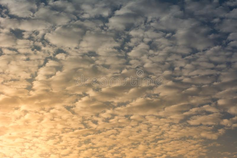 Cirrocumulus on blue sky in sunlight royalty free stock photos