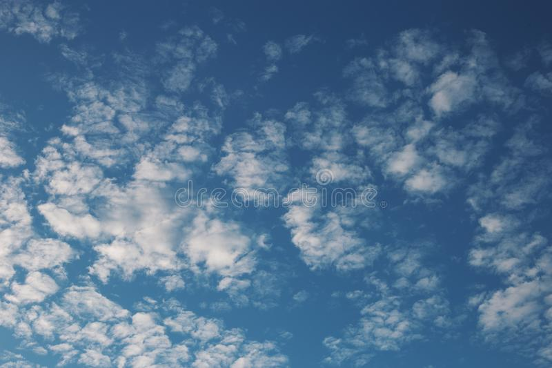 Cirrus cumulus clouds on a blue sky. Background blank texture. Bright, clear, natural, space, pattern, dreamy, climate, stratus, orange, evening, color, white stock images