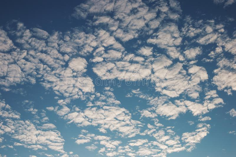 Cirrus cumulus clouds on a blue sky. Background blank texture. Bright, clear, natural, space, pattern, dreamy, climate, stratus, orange, evening, color, white royalty free stock image
