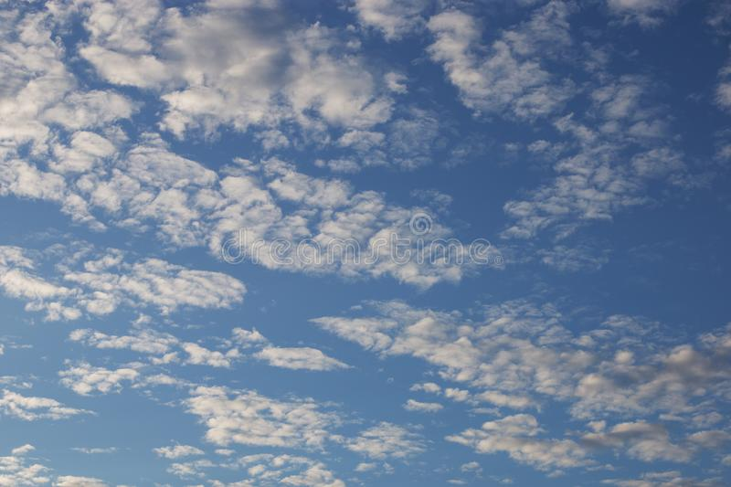 Cirrus cumulus clouds on a blue sky. Background blank texture. Bright, clear, natural, space, pattern, dreamy, climate, stratus, orange, evening, color, white stock photography