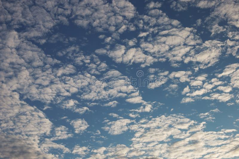 Cirrus cumulus clouds on a blue sky. Background blank texture. Bright, clear, natural, space, pattern, dreamy, climate, stratus, orange, evening, color, white stock image