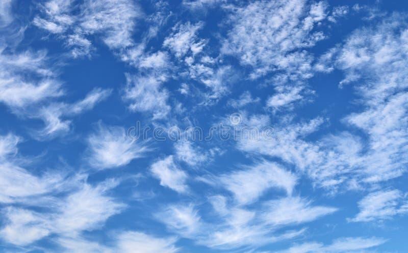 Cirrus haut dans le ciel bleu photographie stock libre de droits