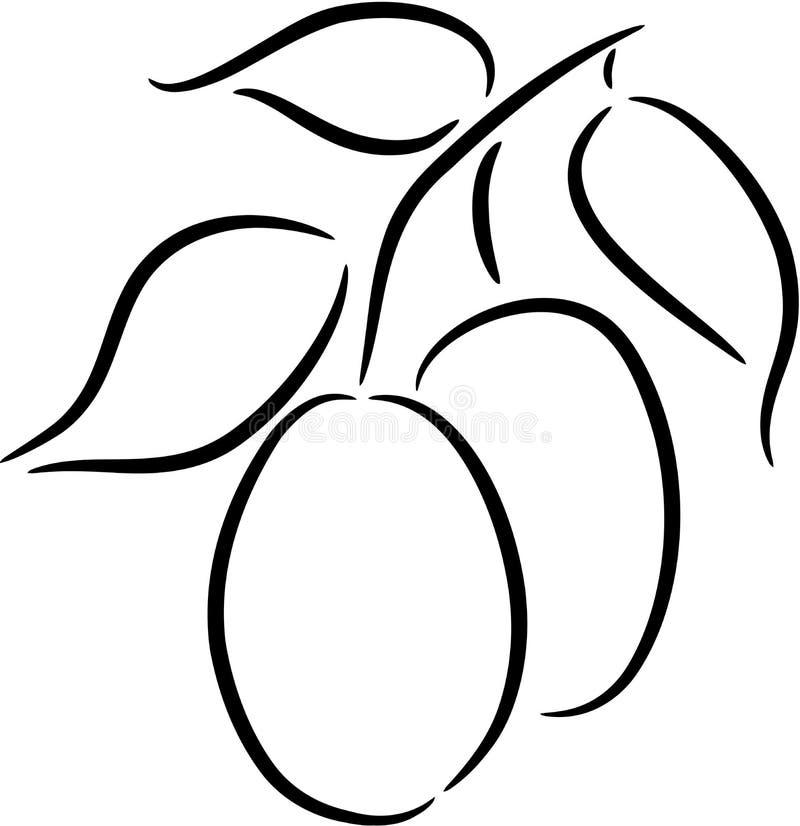 Ciruelo ilustración del vector