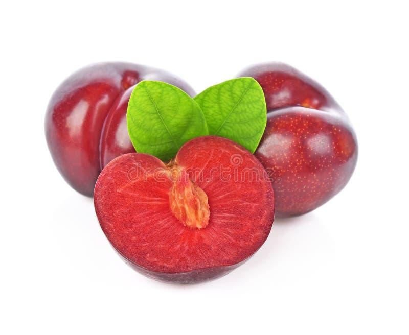 Ciruelo de cereza rojo con las hojas del verde aisladas en el fondo blanco imágenes de archivo libres de regalías