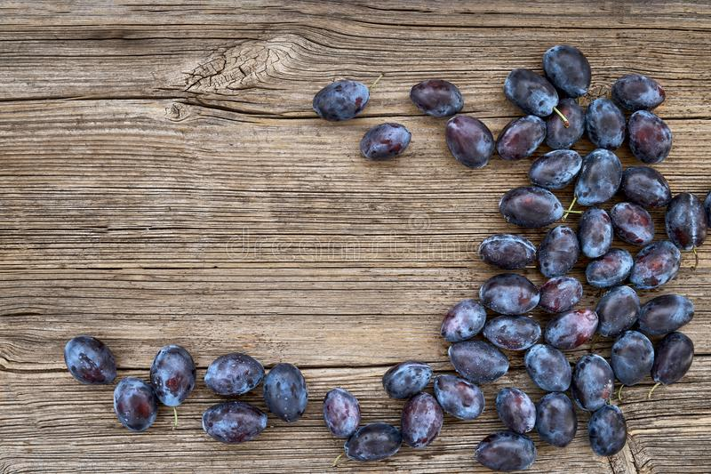 Ciruelos azules frescos en la tabla de madera vieja Alimento biológico Visión superior imagenes de archivo